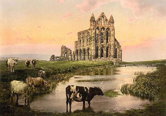 Old Whitby Abbey